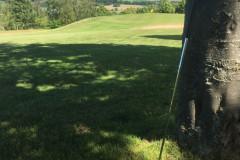 golf_2104043